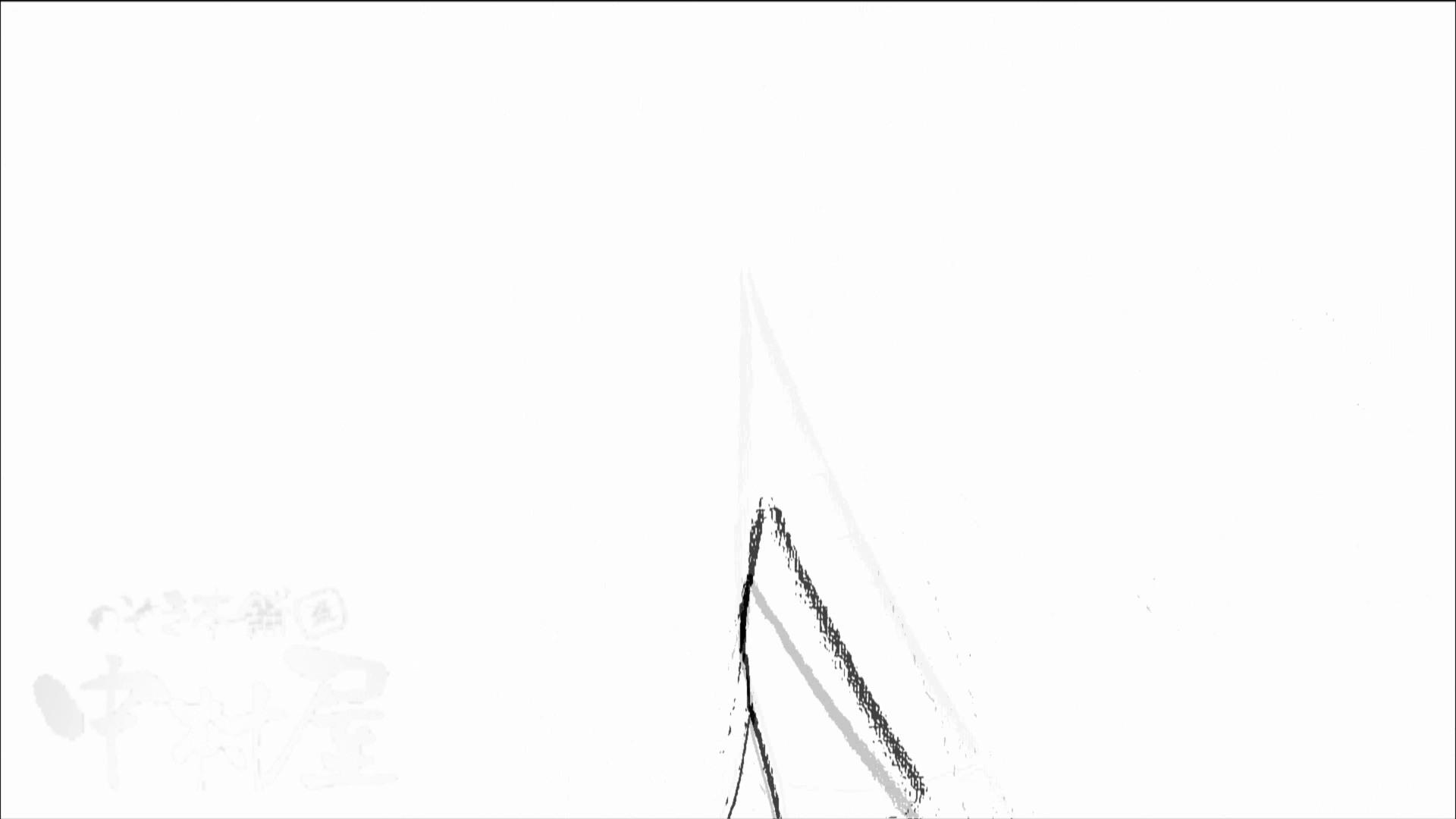 美しい日本の未来 No.07 排泄  89Pix 64