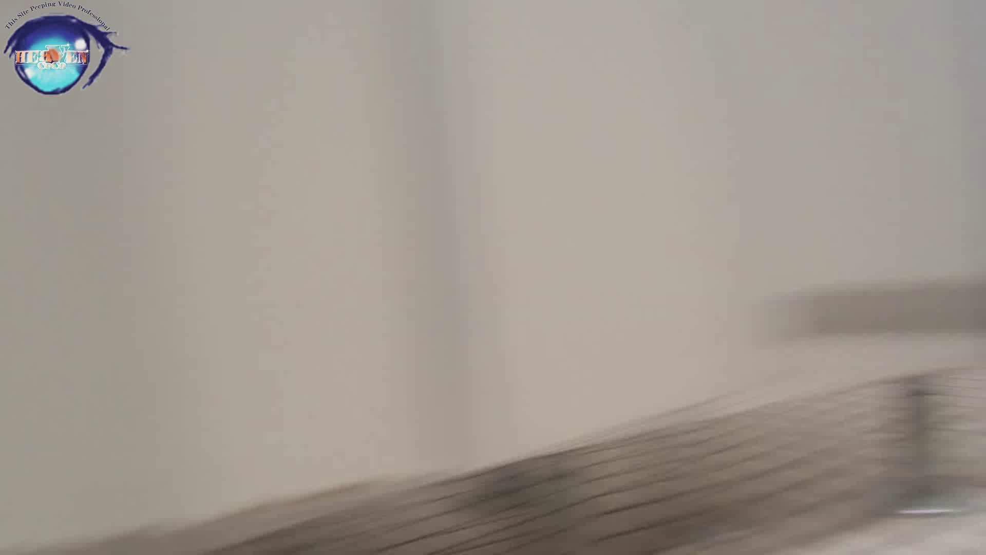 雅さんの独断と偏見で集めた動画集 厠編vol.01 厠  78Pix 24