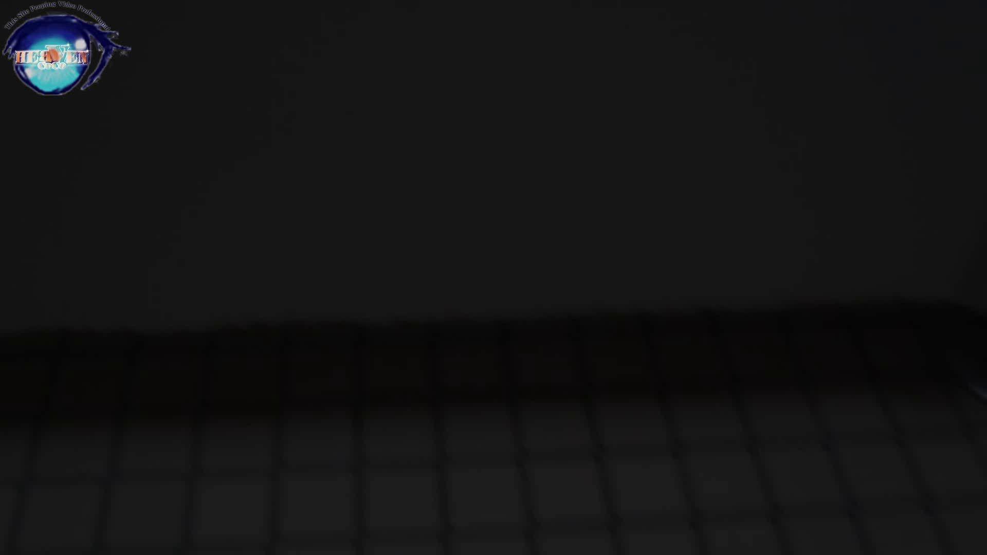 雅さんの独断と偏見で集めた動画集 厠編vol.02 OLハメ撮り  91Pix 1