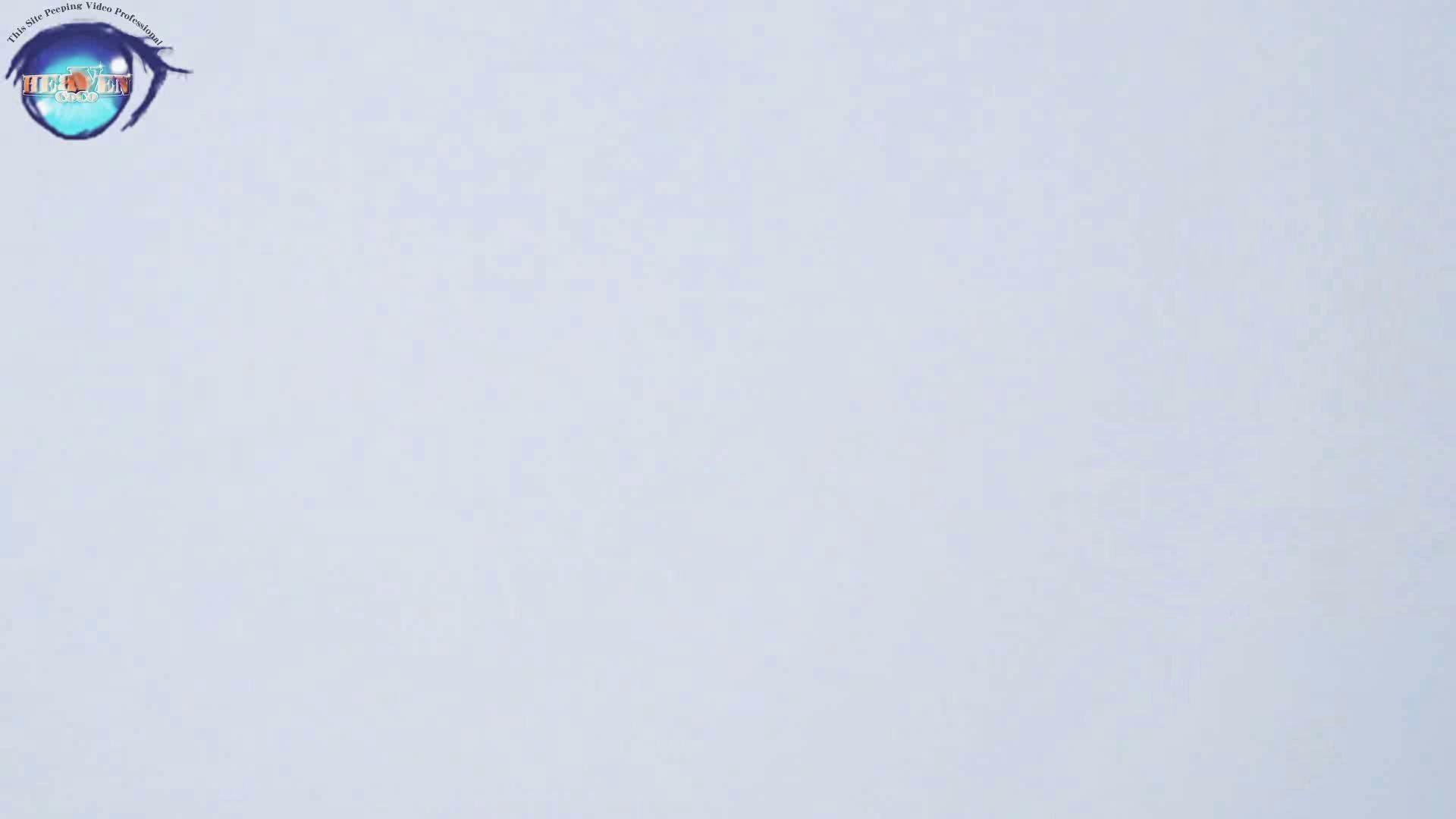 雅さんの独断と偏見で集めた動画集 厠編vol.02 OLハメ撮り  91Pix 42