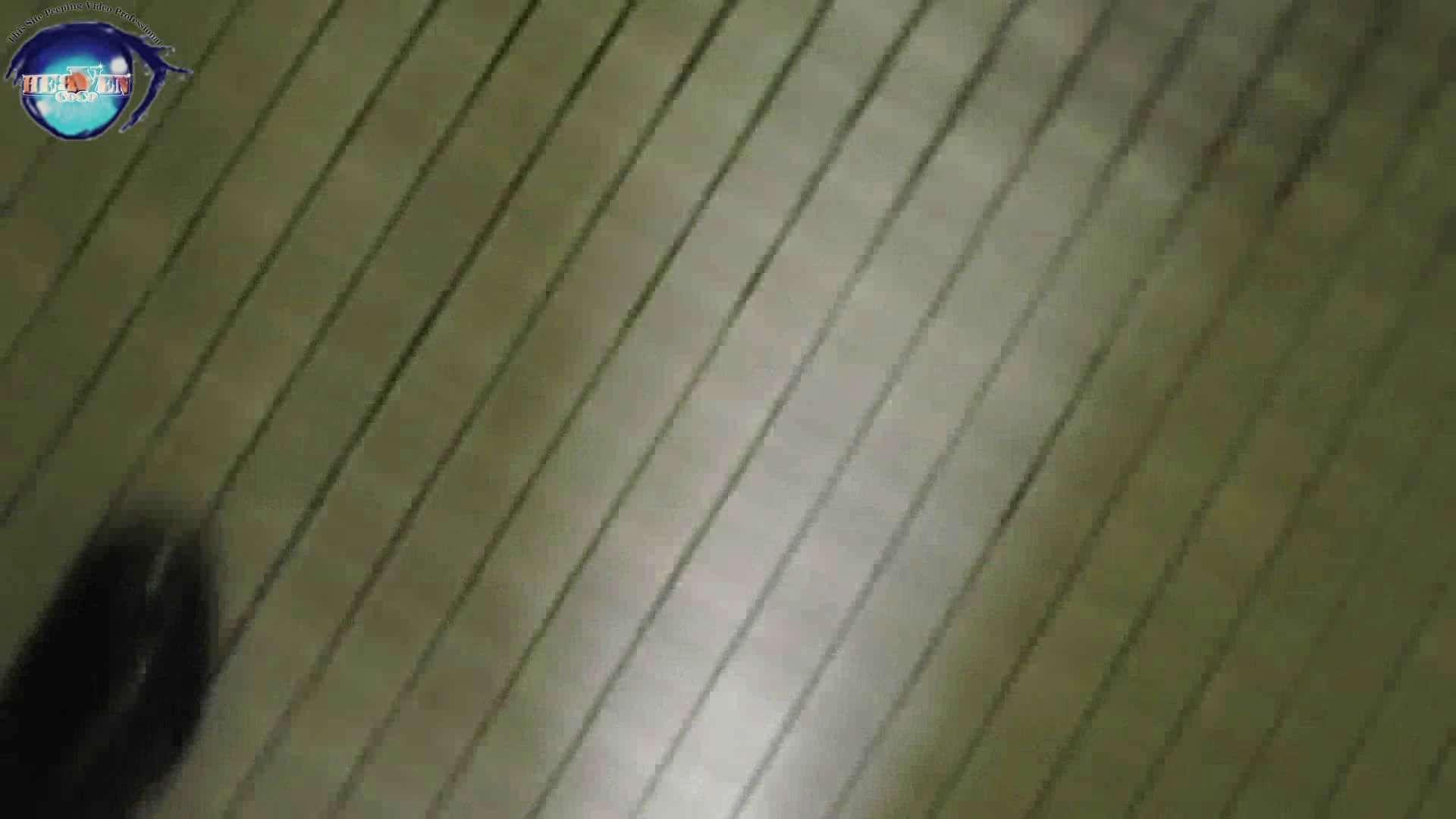 雅さんの独断と偏見で集めた動画集 厠編vol.02 OLハメ撮り  91Pix 61