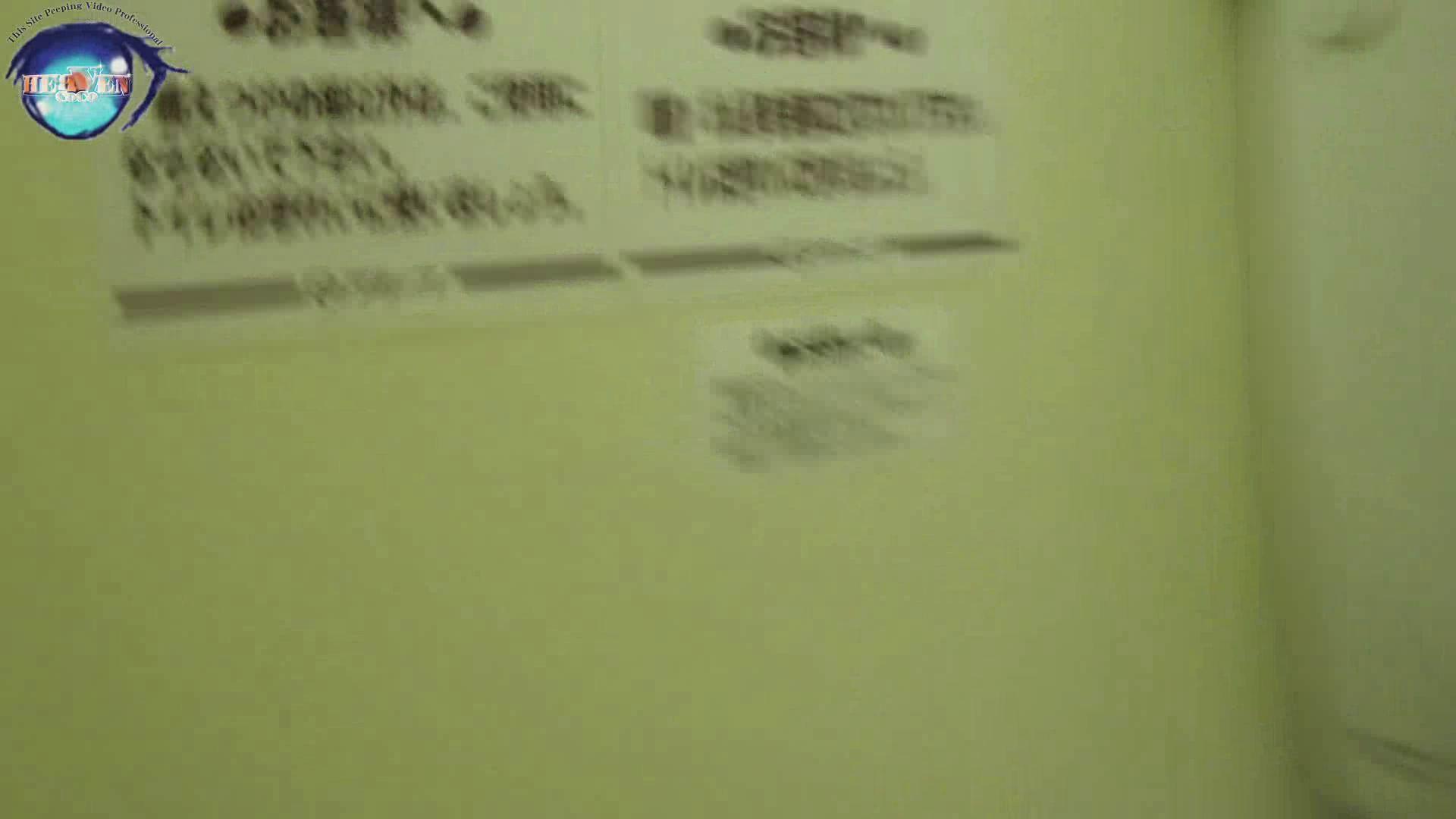雅さんの独断と偏見で集めた動画集 厠編vol.02 OLハメ撮り  91Pix 62