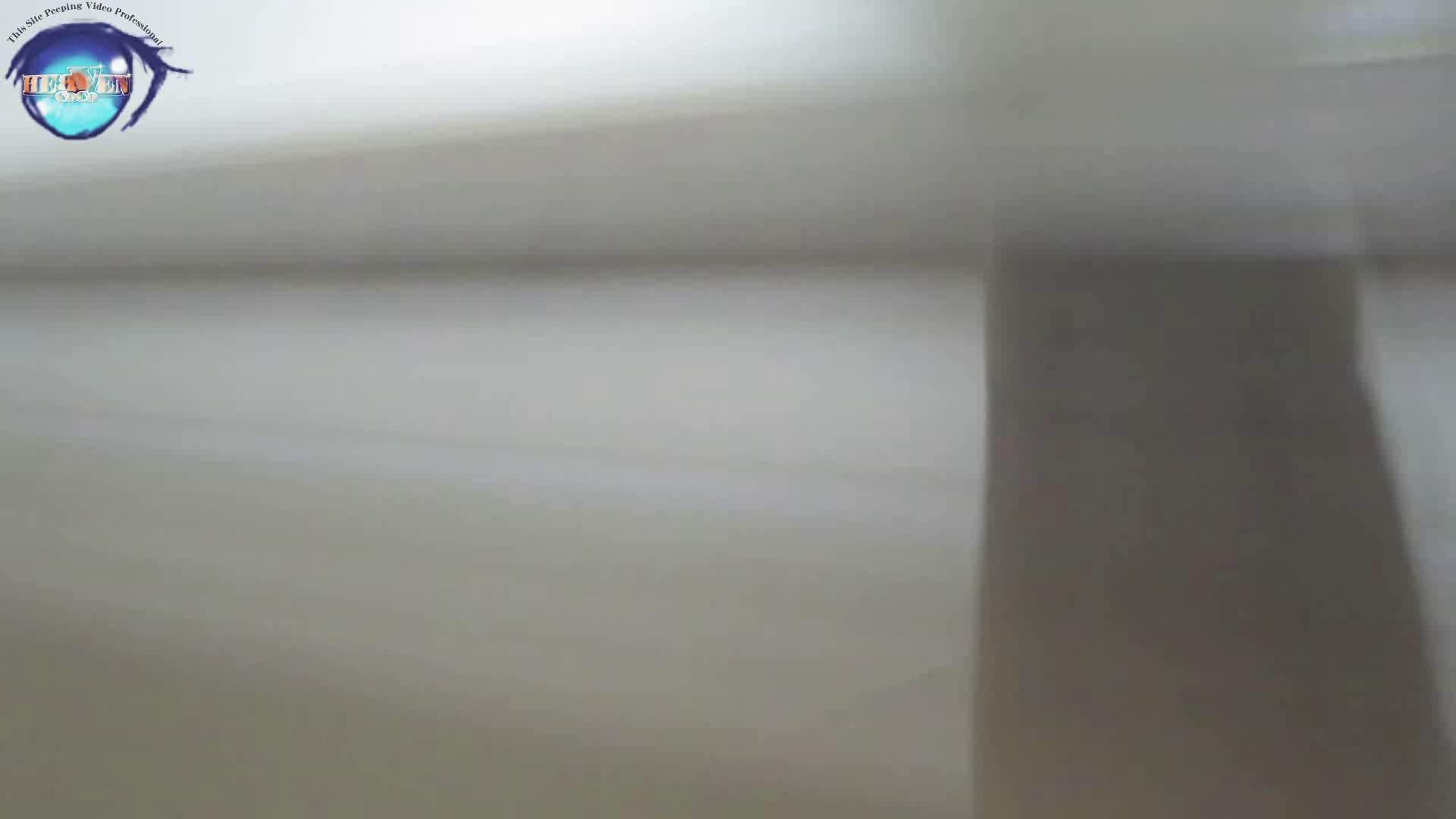 雅さんの独断と偏見で集めた動画集 厠編vol.02 OLハメ撮り  91Pix 86