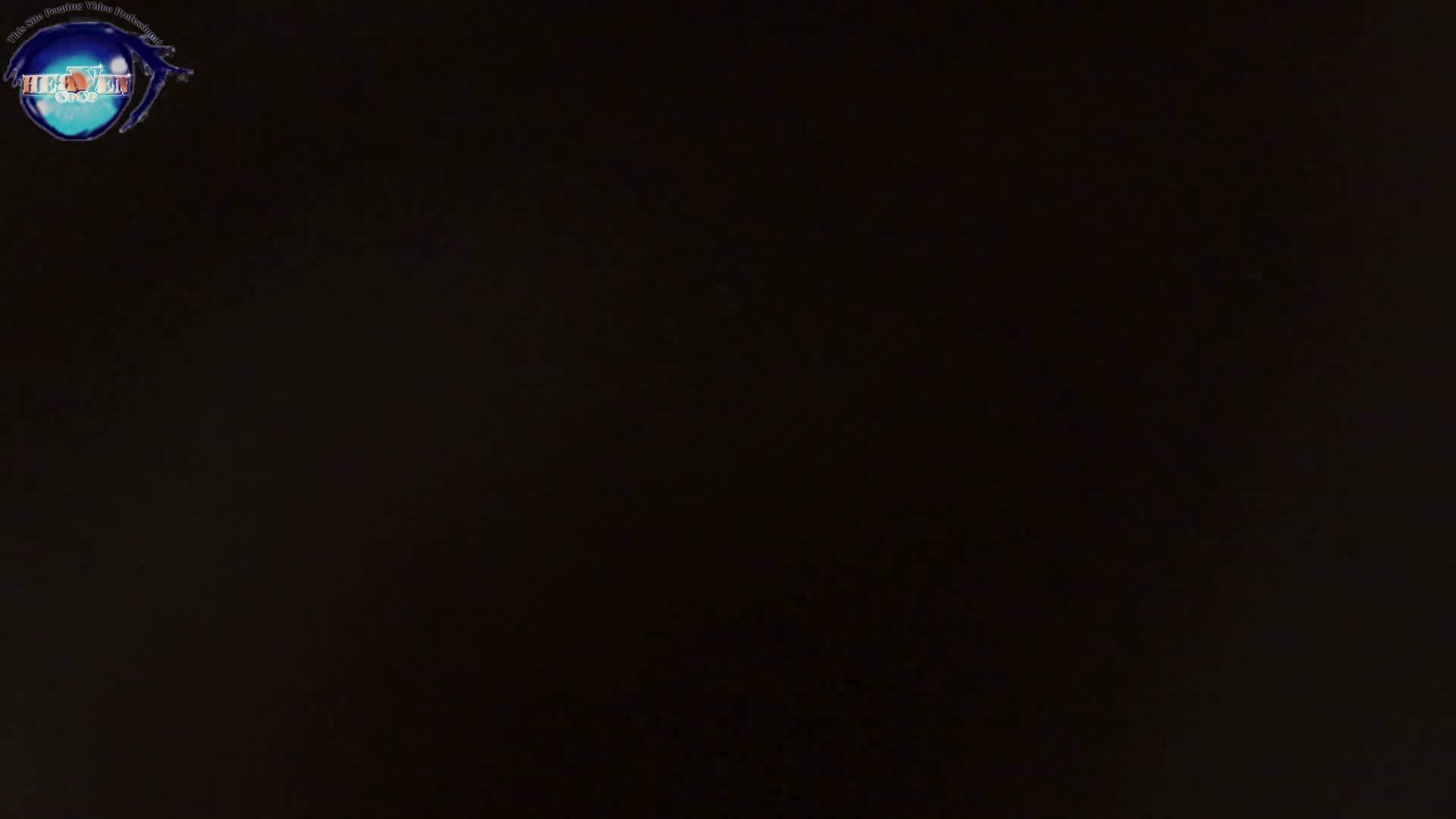雅さんの独断と偏見で集めた動画集 厠編vol.05 厠  99Pix 1