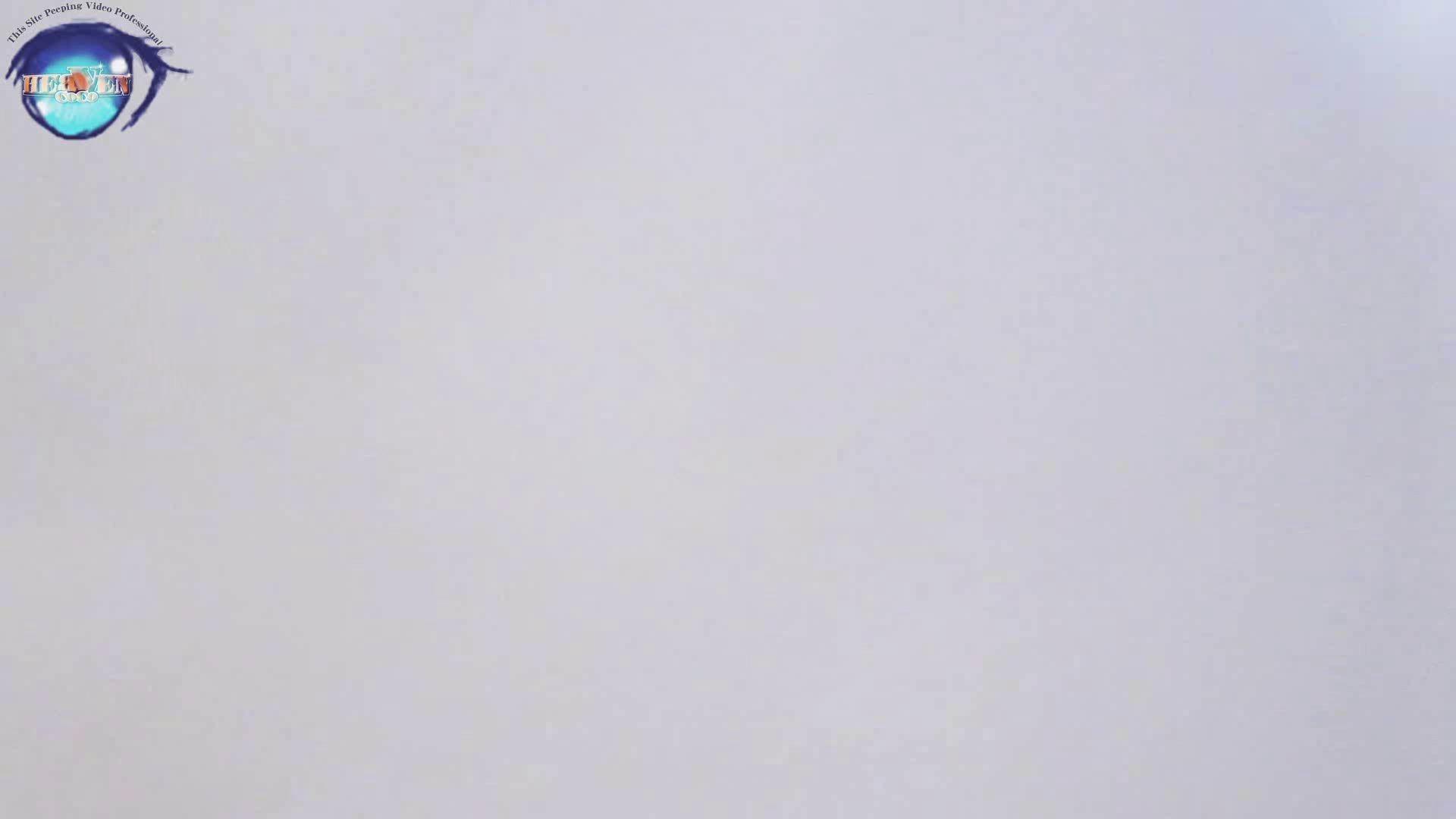 雅さんの独断と偏見で集めた動画集 厠編vol.05 厠  99Pix 29