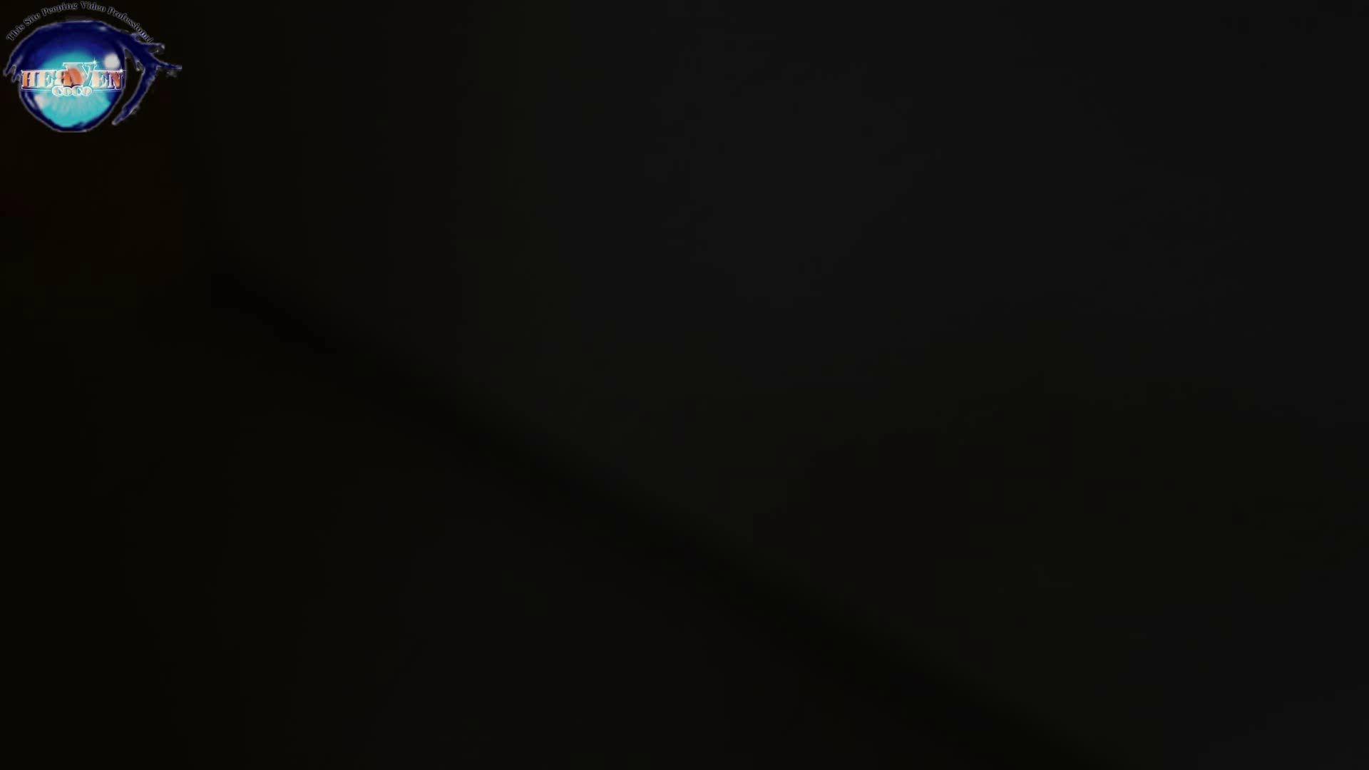 雅さんの独断と偏見で集めた動画集 厠編vol.07 厠  111Pix 2