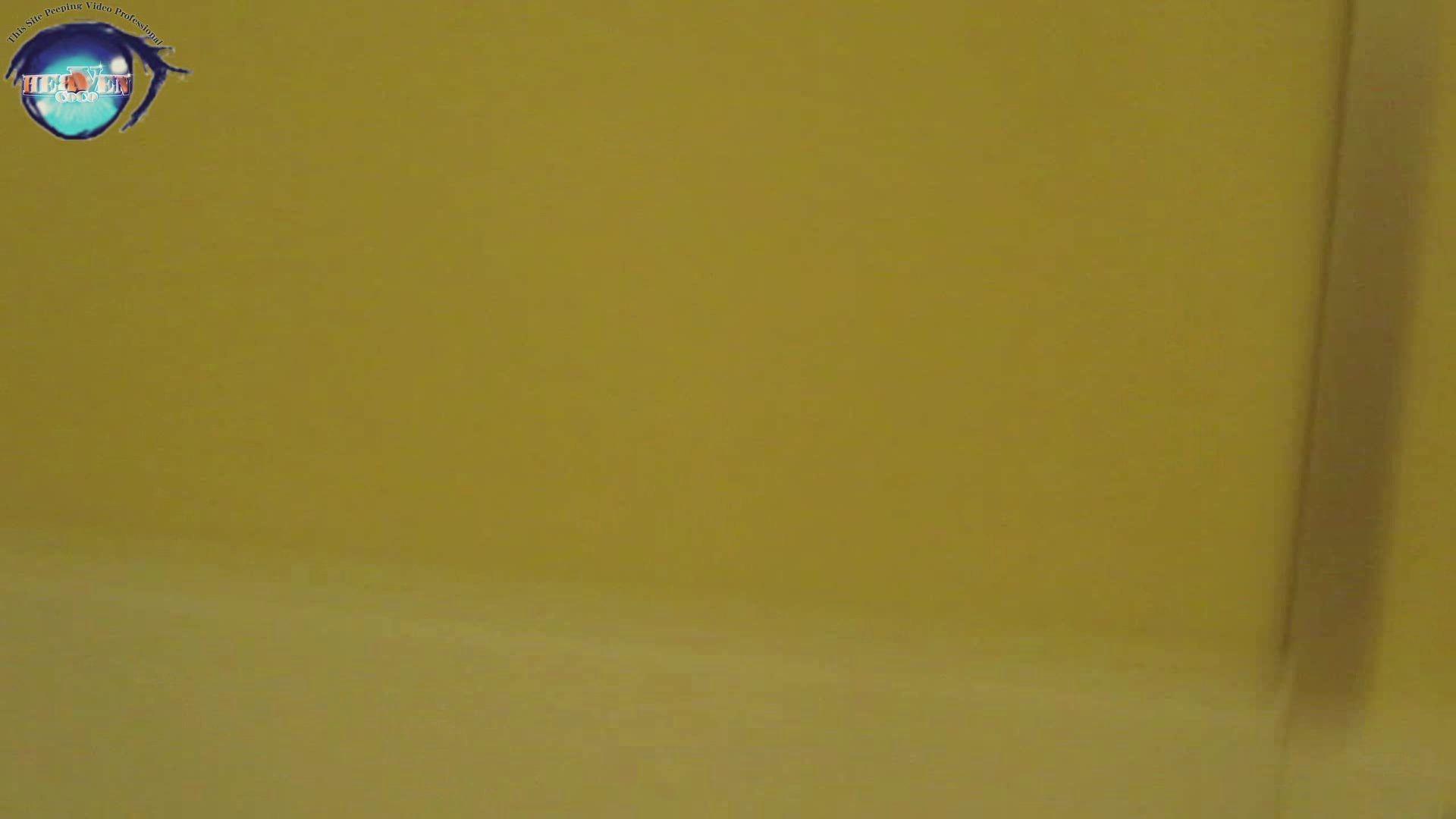 雅さんの独断と偏見で集めた動画集 厠編vol.07 厠  111Pix 5