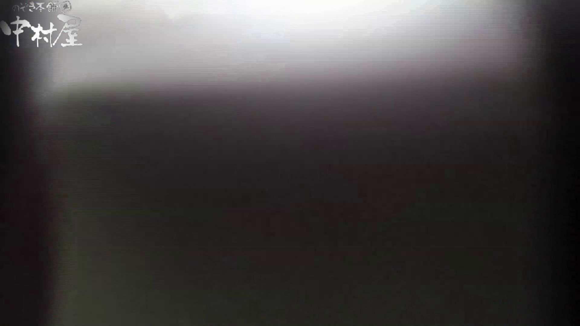 世界の射窓から~ステーション編~vol40 更に画質アップ!! OLハメ撮り  49Pix 37