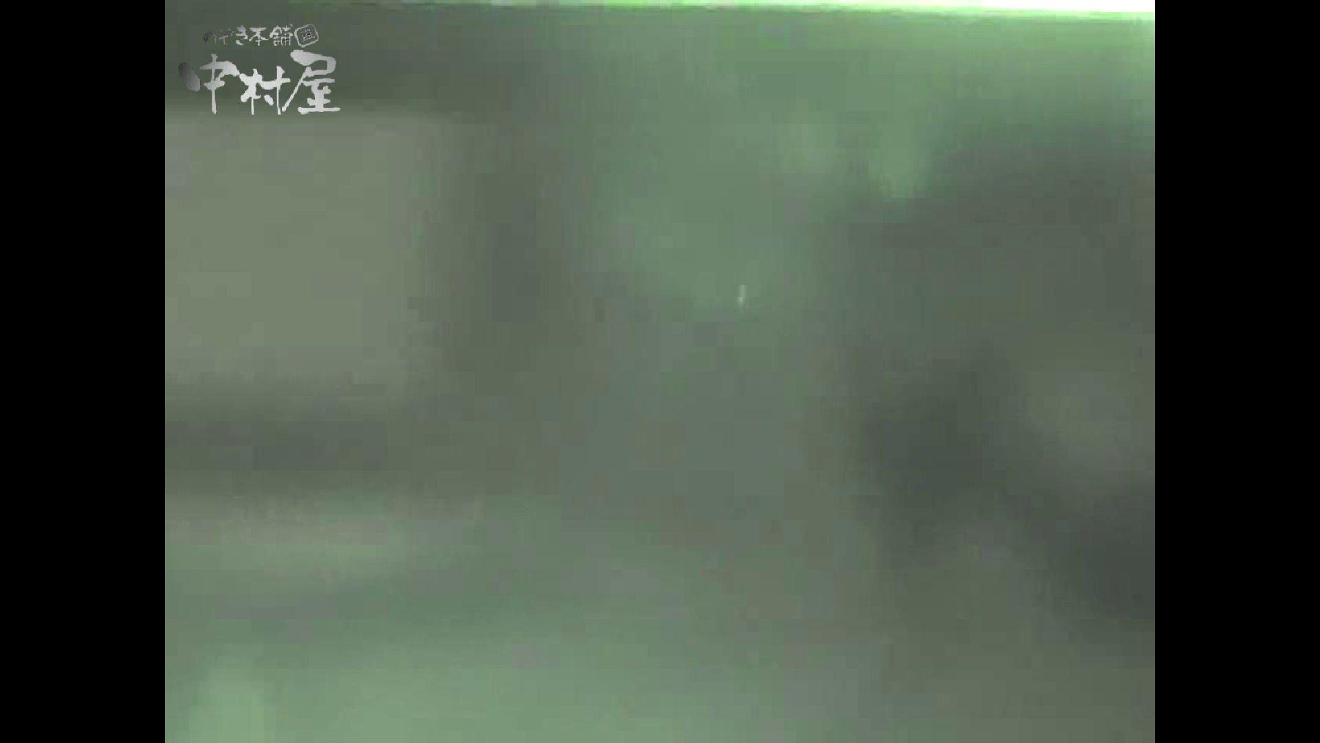 女子トイレ盗撮若い嬢編vol.11 リアルトイレ  73Pix 19